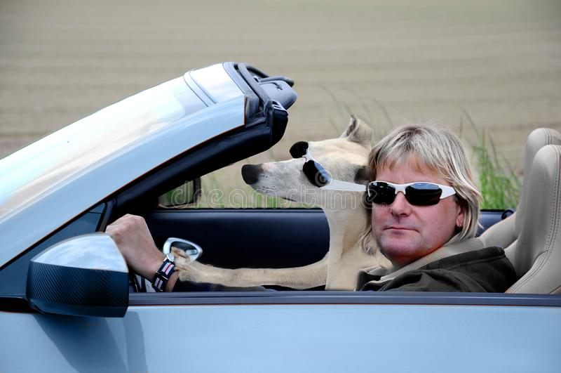Hombre y perro en cabriolé imagenes de archivo