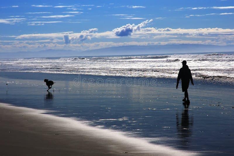 Hombre y perro en la playa imagen de archivo libre de regalías
