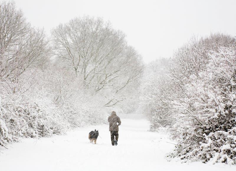 Hombre y perro en nieve imágenes de archivo libres de regalías