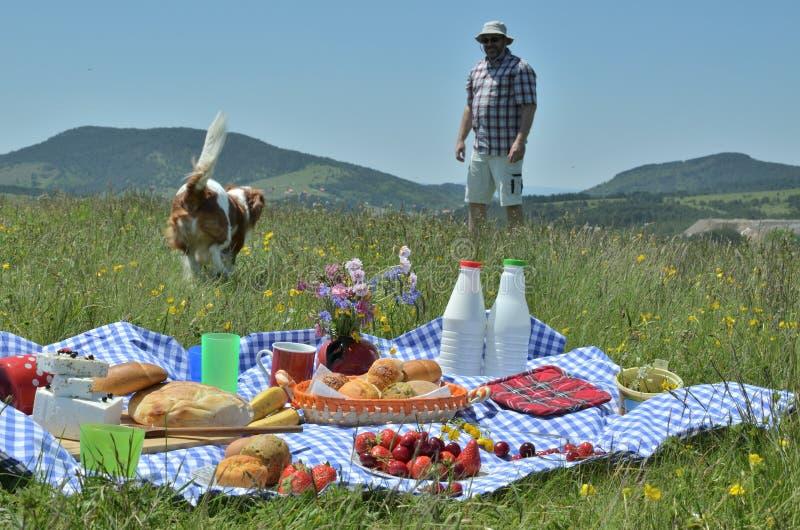 Hombre y perro en una comida campestre imagenes de archivo