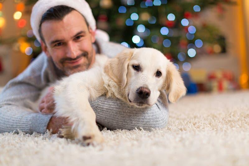 Hombre y perro por el árbol de navidad fotografía de archivo