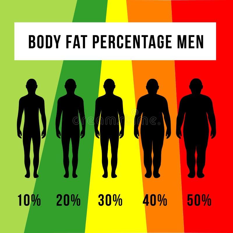 Hombres del porcentaje de las grasas de cuerpo ilustración del vector