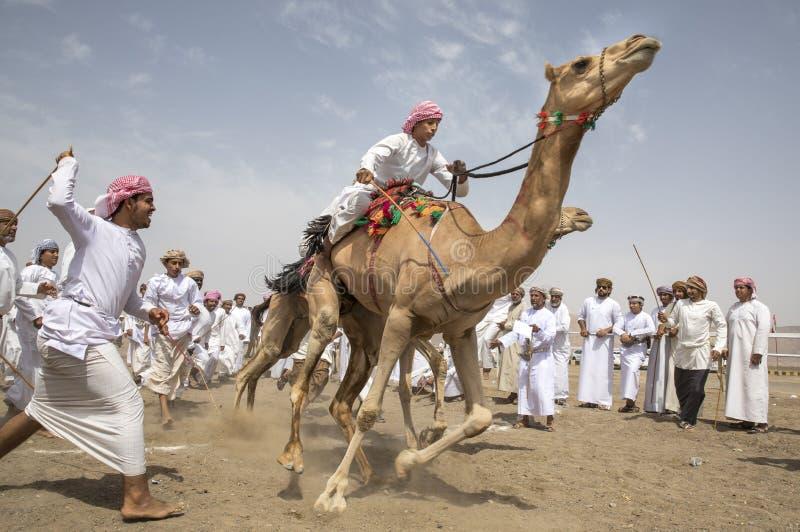 Hombres en camellos al inicio de una raza imagenes de archivo