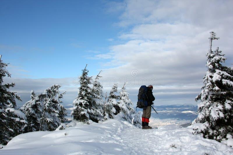Hombres en el invierno foto de archivo libre de regalías