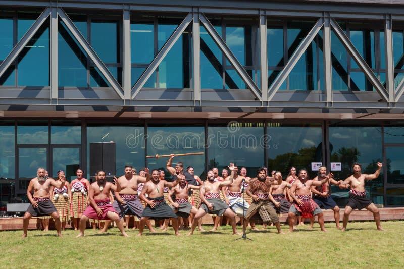 Hombres maoríes que realizan haka fuera del edificio moderno grande foto de archivo