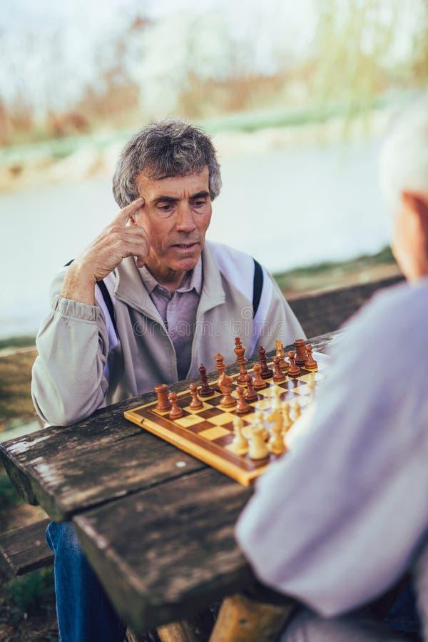 Hombres mayores que se divierten y que juegan a ajedrez en el parque imagen de archivo libre de regalías