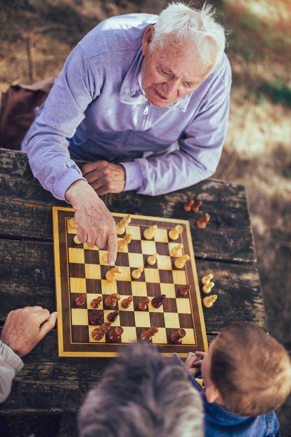 Hombres mayores que se divierten y que juegan a ajedrez en el parque foto de archivo libre de regalías