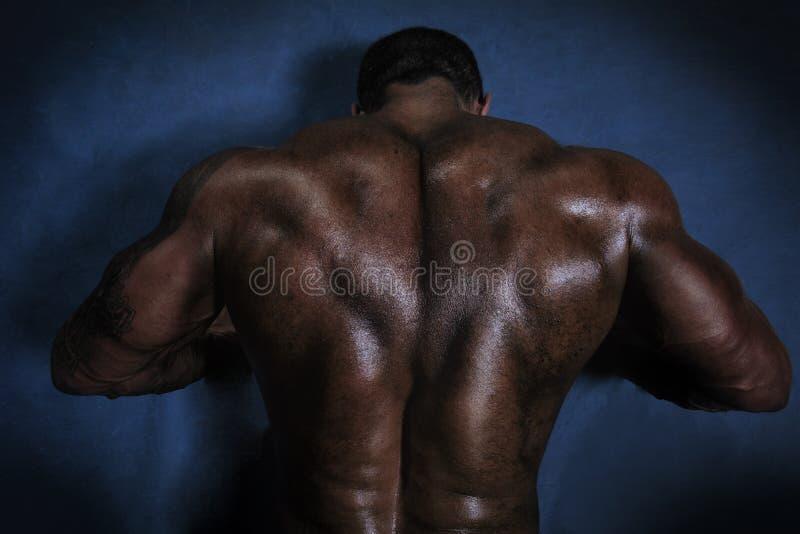 Hombres musculares traseros fotografía de archivo