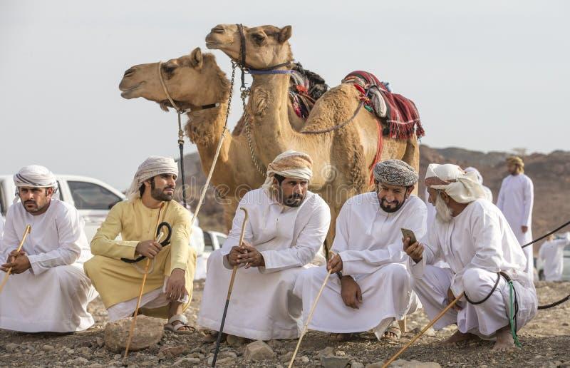 Hombres omaníes con sus camellos ante una raza fotos de archivo
