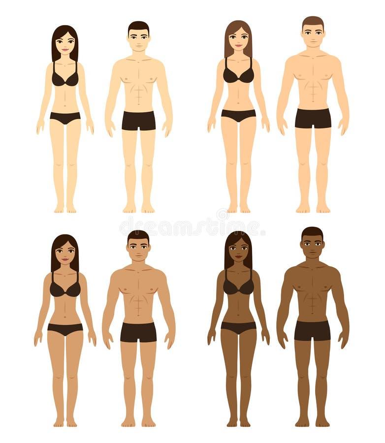 Hombres y mujeres diversos stock de ilustración