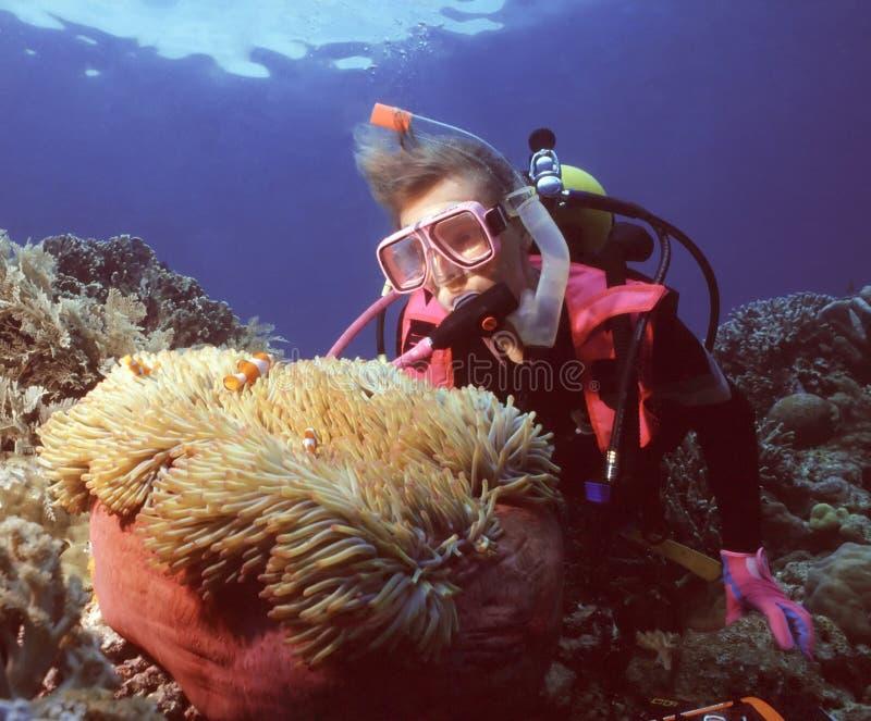 HOME de Nemo imagem de stock
