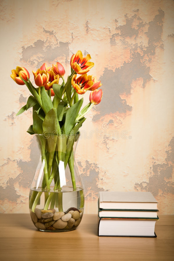 Download Home decoration stock photo. Image of botany, design, beauty - 8222360