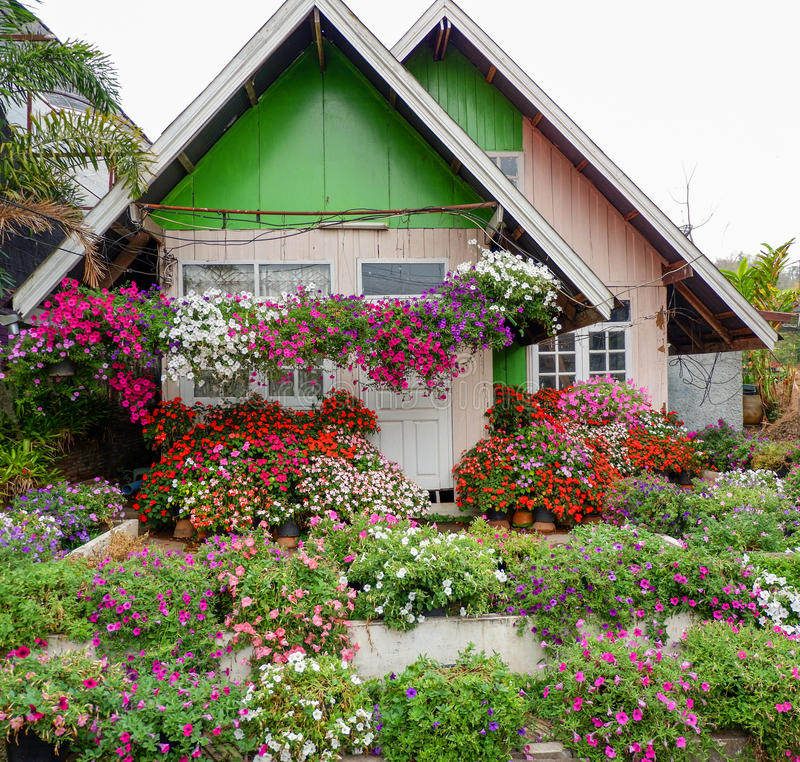 Home Flower colorful house royalty free stock images