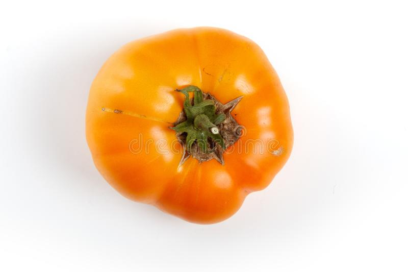 Home grown tomato. At Vancouver BC Canada royalty free stock photos