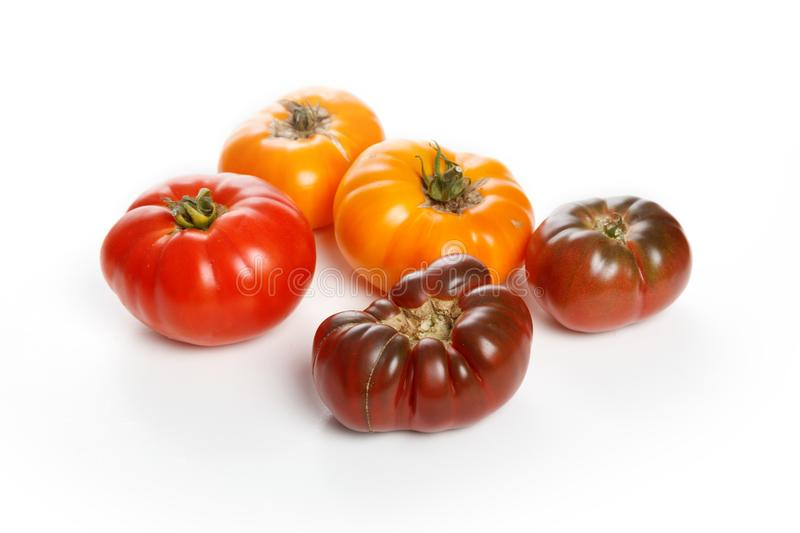 Home grown tomato. At Vancouver BC Canada royalty free stock image