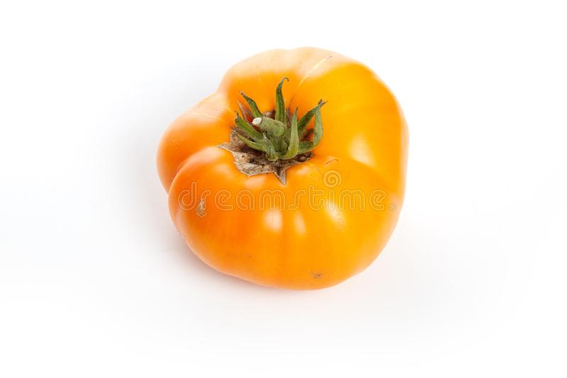 Home grown tomato stock images
