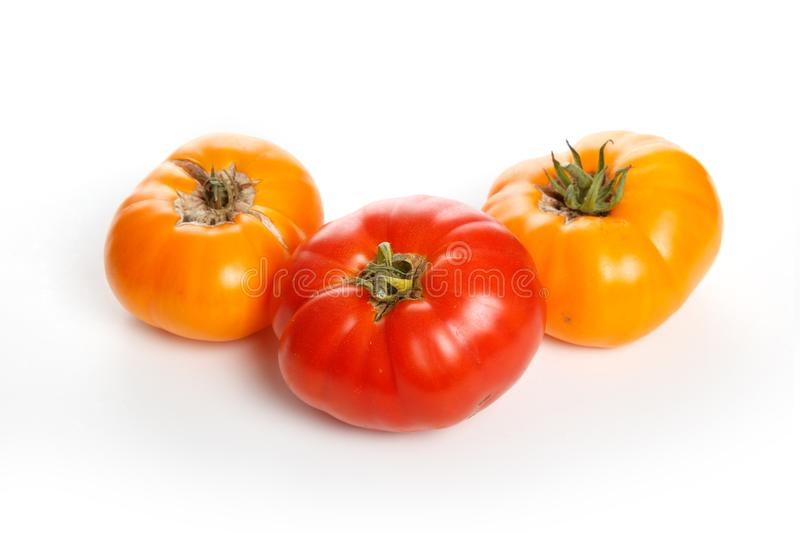 Home grown tomato. At Vancouver BC Canada royalty free stock photography