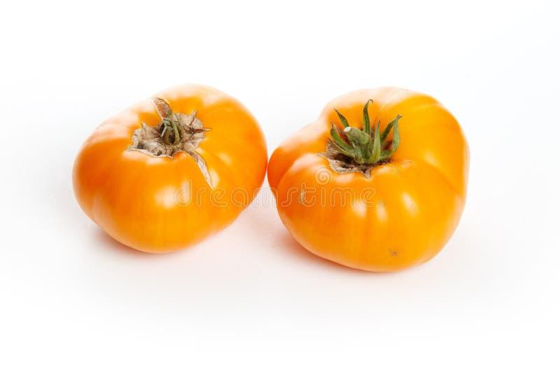 Home grown tomato royalty free stock photo