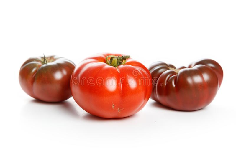 Home grown tomato. At Vancouver BC Canada royalty free stock photo