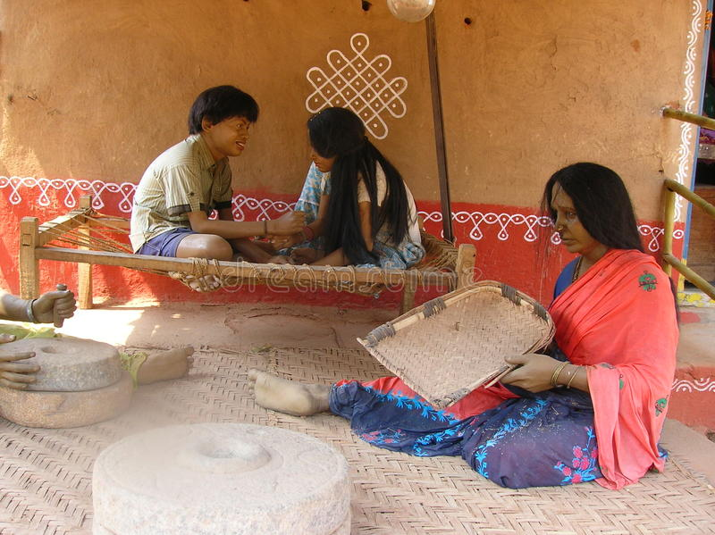 home indisk statykvinna royaltyfri foto