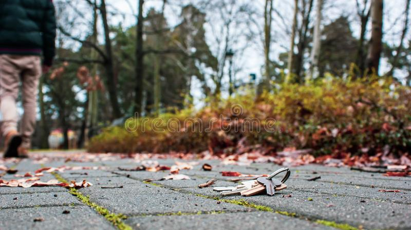 Lost home keys in public park royalty free stock photo