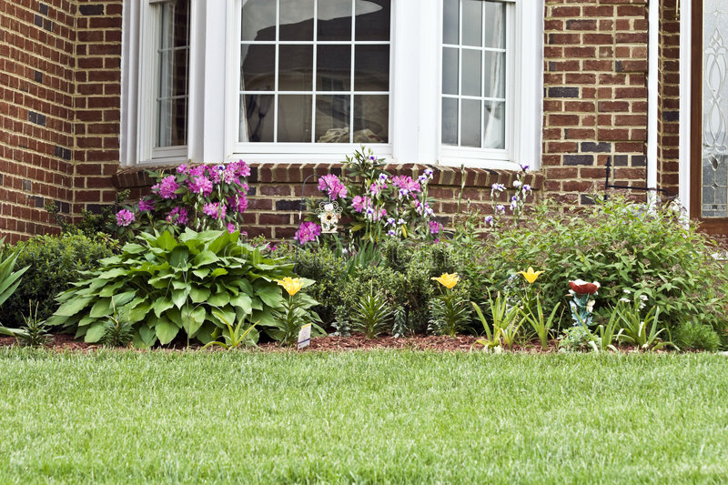 Home Landscaping. Home garden / landscaping with various flowers and other plants stock images