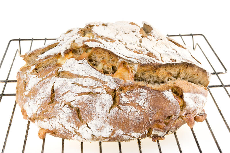 Download Home-made bread stock photo. Image of warm, dish, cooking - 25018632