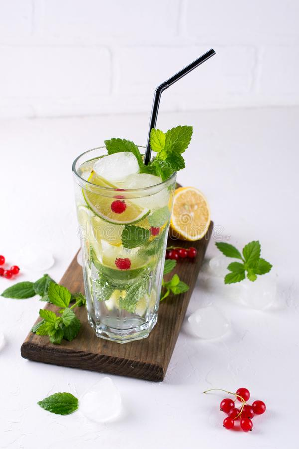 Mint leaves, with ice and red currant royalty free stock photography