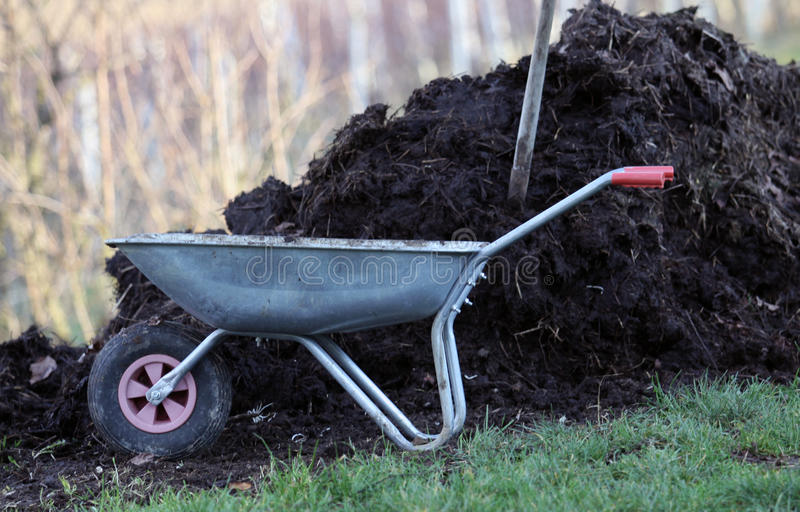 Home manure fertilizer for vegetable garden royalty free stock photography