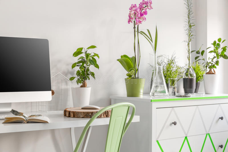 Home office with eco soul royalty free stock photos