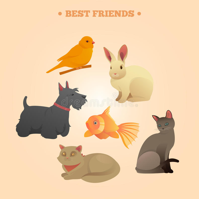 Home Pets Set: Carrot, Dog, Rabbit, Fish and Cats. Vector illustration royalty free illustration