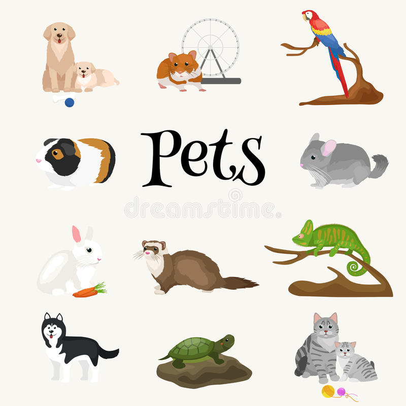 Home pets set cat dog parrot goldfish hamster for Fish and pets unlimited