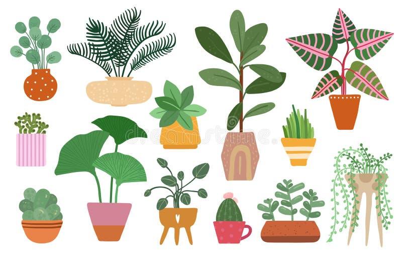 Indoor Trees Stock Illustrations 586 Indoor Trees Stock