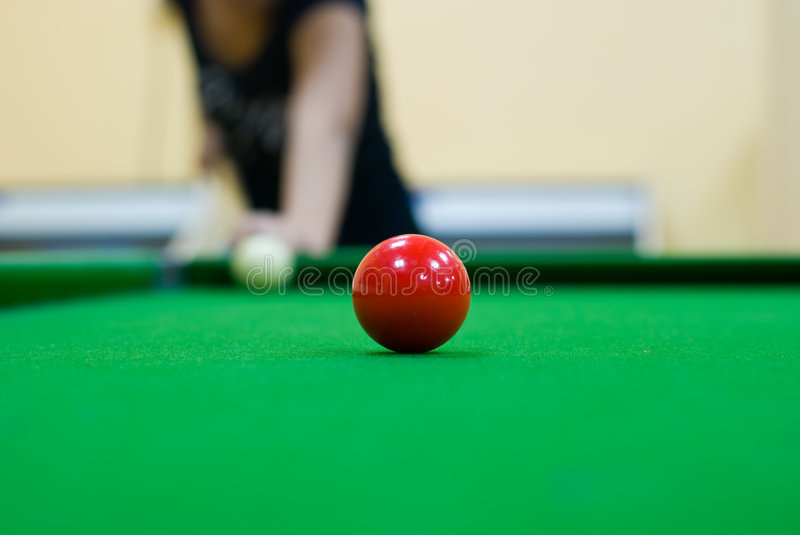 Download Home pool stock image. Image of play, stick, object, pool - 4052717