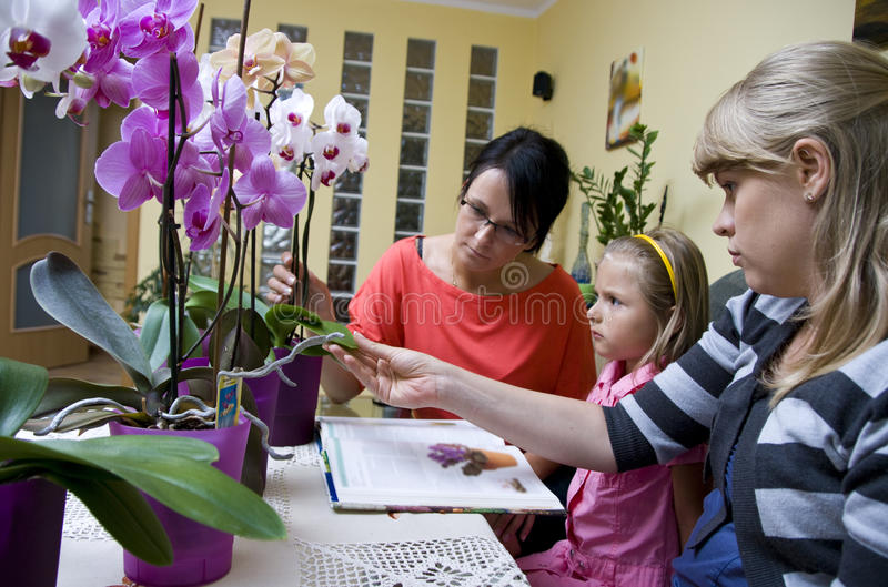 Home schooling - flowers stock image