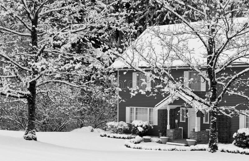 home snowtreesvinter royaltyfri bild