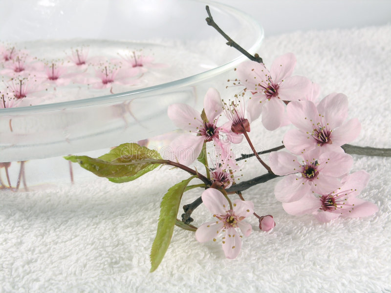 Home spa - a litte pink flowers stock photo