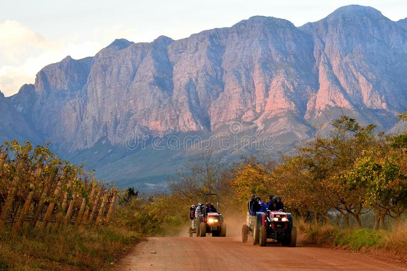 Home Time In The Mountains. Taken on a wine estate near Somerset West Cape Province South Africa. Farm workers being taken home after a day working in the stock photo
