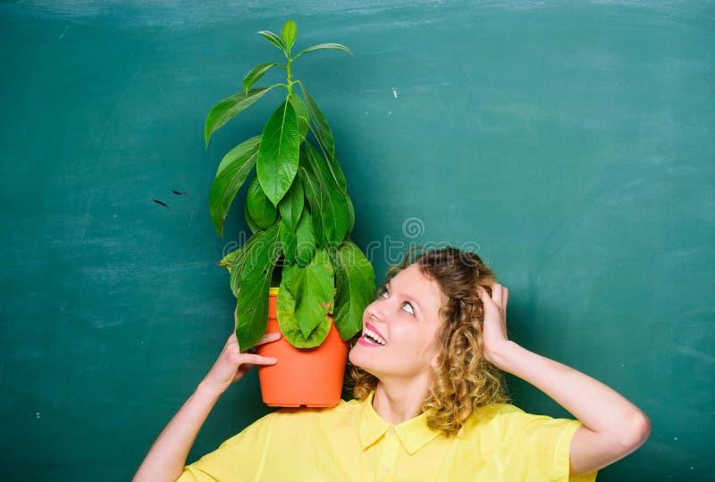 Home tr?dg?rd Houseplantsfördelar och positiv påverkan på hälsa Lätta houseplants Ta bra omsorghouseplants flicka fotografering för bildbyråer