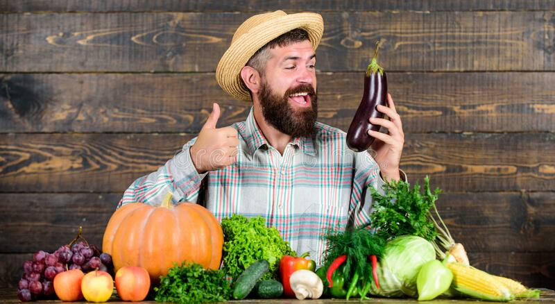 Homegrown organic food. Man with beard wooden background. Organic horticulture concept. Farmer with organic vegetables stock photos