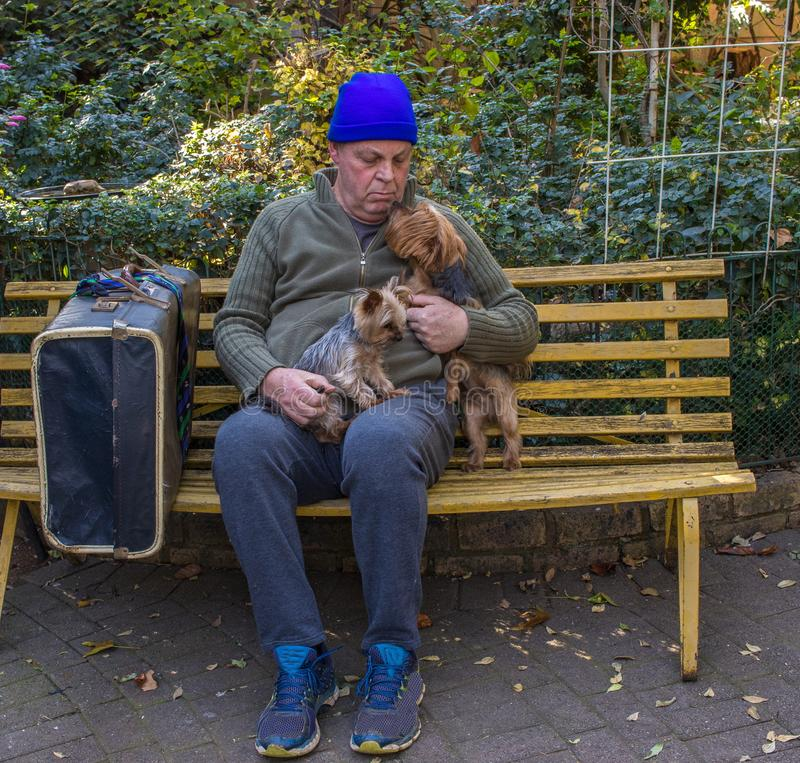 Homeless man and his dog sit on a park bench. Homeless caucasian man sit on a yellow park bench with his dog and his belongings image with copy space in royalty free stock photography