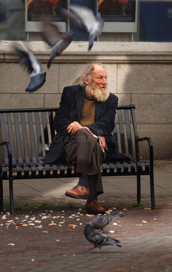 Homeless man feeding pigeons royalty free stock photo