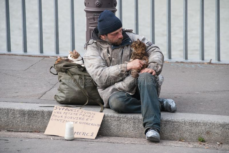 Homeless man and his cats royalty free stock images