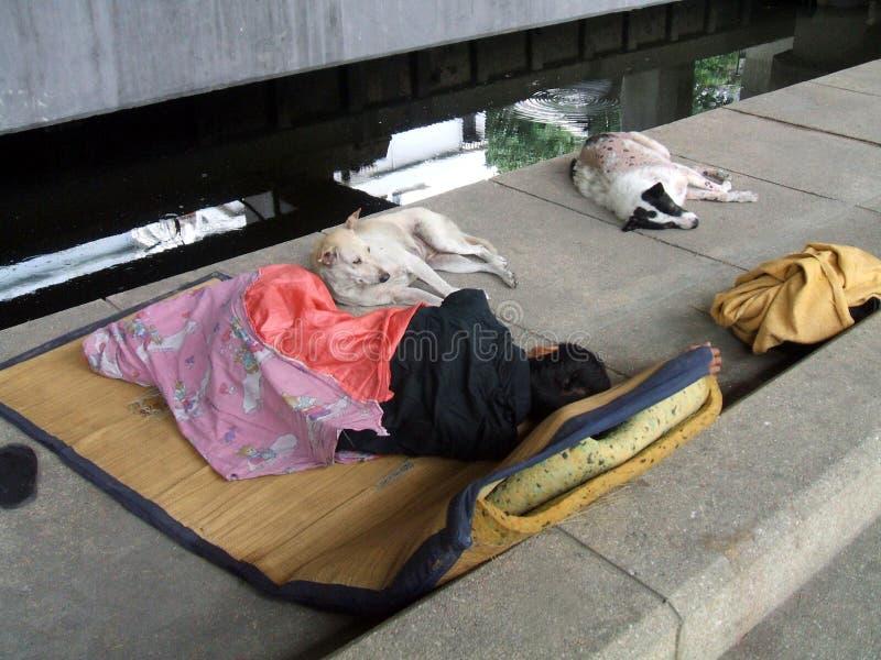 homelessness arkivbilder