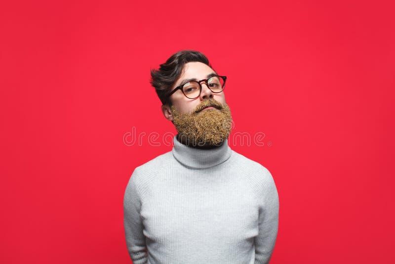 Homem à moda com a barba loura escura foto de stock royalty free