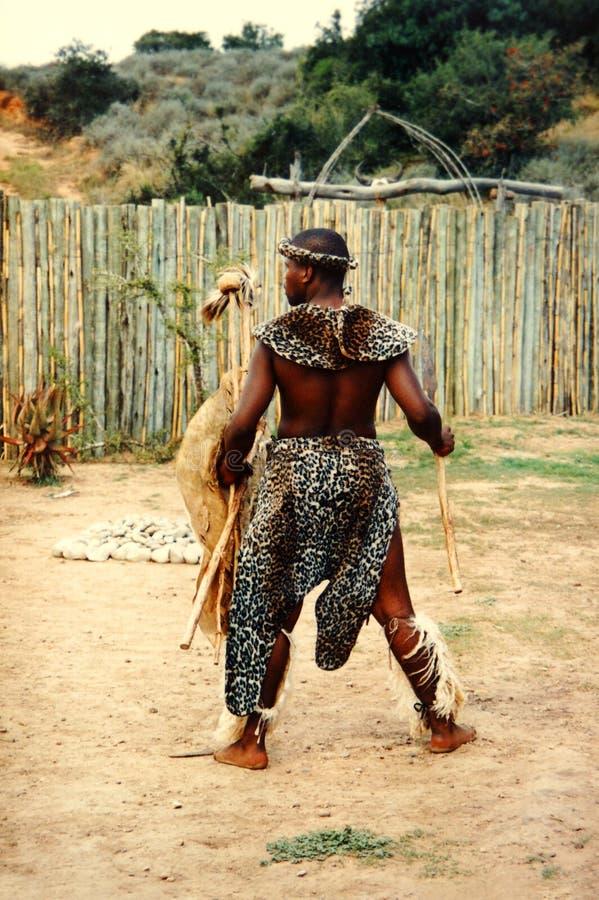 Homem africano do tribo Zulu