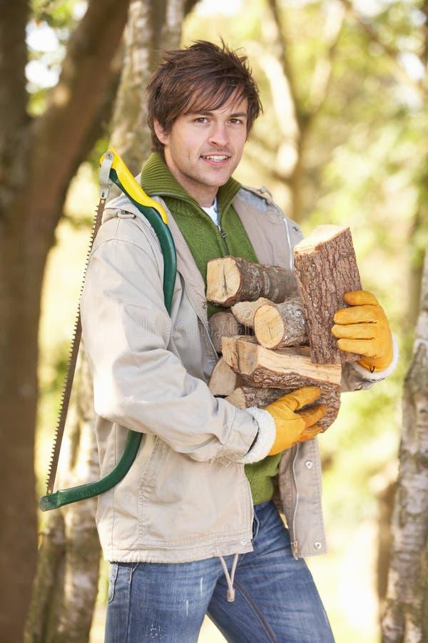 Homem ao ar livre na floresta do outono que recolhe registros imagens de stock