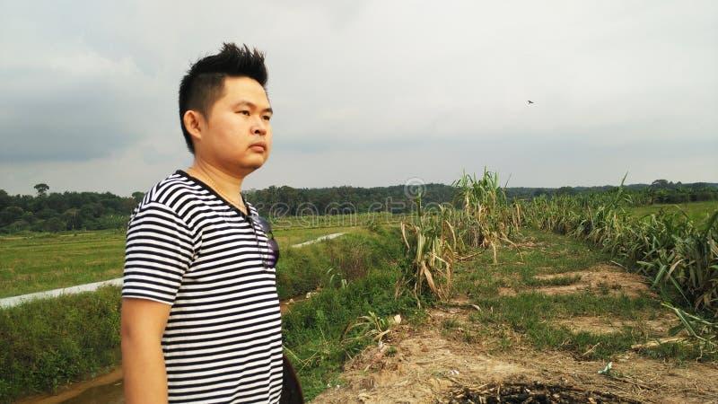 Homem asiático bonito considerável que olha o por do sol imagens de stock