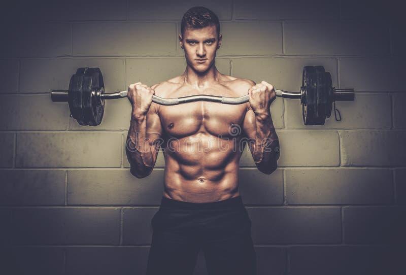Homem atlético que faz exercícios com o barbell no estúdio do Gym fotos de stock royalty free