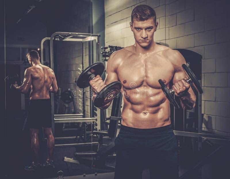Homem atlético que faz exercícios com pesos no estúdio do Gym fotografia de stock